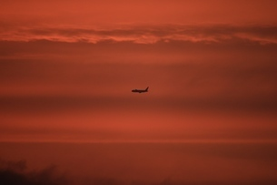 夕日雲と飛行機の写真素材 [FYI03823570]