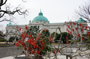 博物館で初詣(東京国立博物館の表慶館)の写真素材 [FYI03823634]