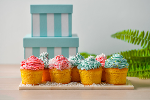 Homemade cupcakes with pink and blue icing decorationの写真素材 [FYI03823890]