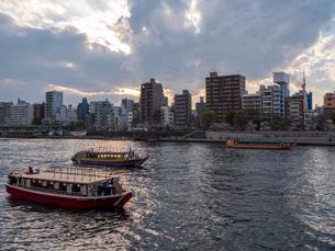 夕暮れ、花見を楽しむ隅田川の屋形船の写真素材 [FYI03823932]