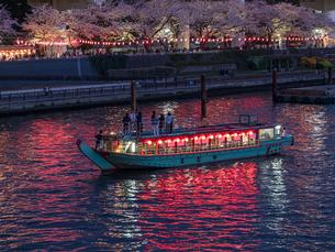 夜桜と隅田川の屋形船の写真素材 [FYI03823938]