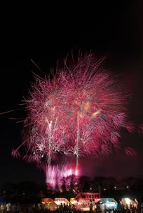 土浦全国花火競技大会のスターマイン ピンクのじゅうたんの写真素材 [FYI03824215]