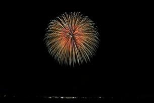 いばらきまつりフィナーレ花火の10号玉 錦先変化菊の写真素材 [FYI03824243]