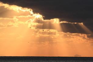 海の木漏れ日の写真素材 [FYI03824360]