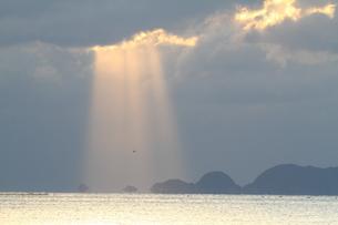 海の木漏れ日の写真素材 [FYI03824362]