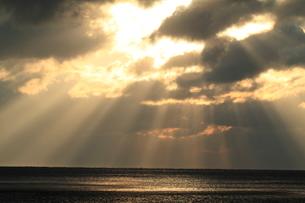 海の木漏れ日の写真素材 [FYI03824363]