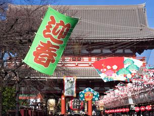 正月の浅草仲見世通りの写真素材 [FYI03824677]