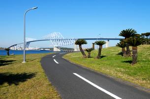 サイクリングロードと東京ゲートブリッジと富士山の写真素材 [FYI03825214]