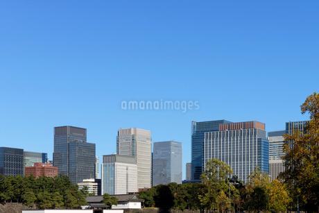皇居外苑から見る丸の内の高層ビル群の写真素材 [FYI03825236]