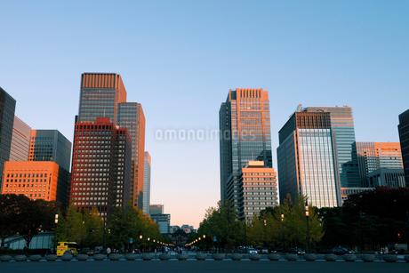 夕日に輝く丸の内の高層ビル群の写真素材 [FYI03825242]