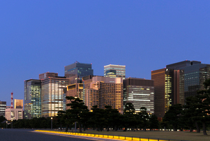 夕暮れの皇居外苑から見る丸の内の高層ビル群の写真素材 [FYI03825245]