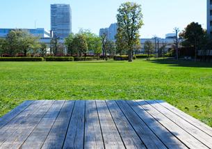 公園のピクニックテーブルと新緑の芝生の写真素材 [FYI03825264]