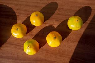 木製のテーブルの上の蜜柑の写真素材 [FYI03825457]