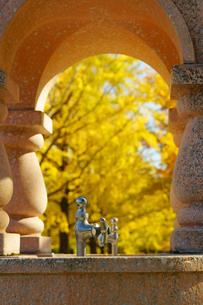 秋の熊本テクノリサーチパークの写真素材 [FYI03825861]