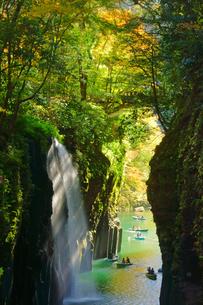 秋の真名井の滝の写真素材 [FYI03825959]