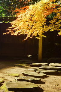 秋の立田自然公園の写真素材 [FYI03826087]