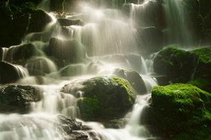 菊池渓谷の写真素材 [FYI03826177]