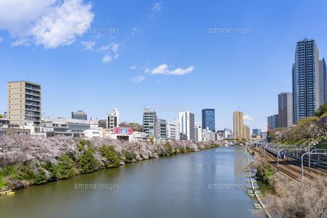 市ヶ谷の桜の写真素材 [FYI03826350]