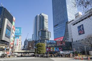 渋谷のスクランブル交差点とヒカリエと渋谷スクランブルスクエアの写真素材 [FYI03826386]