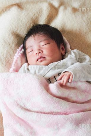 生後2週間の乳児の写真素材 [FYI03826704]