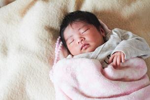 生後2週間の乳児の写真素材 [FYI03826705]