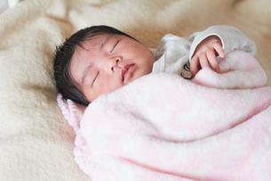 生後2週間の乳児の写真素材 [FYI03826706]