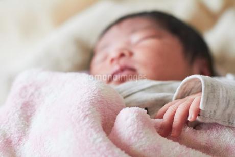 生後2週間の乳児の写真素材 [FYI03826707]