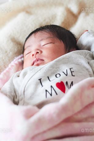 生後2週間の乳児の写真素材 [FYI03826708]