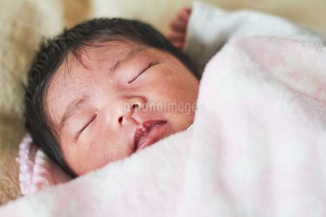 生後2週間の乳児の写真素材 [FYI03826709]