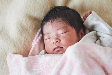 生後2週間の乳児の写真素材 [FYI03826710]