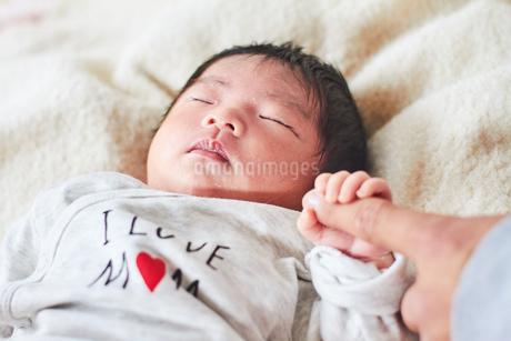 生後2週間の乳児の写真素材 [FYI03826712]