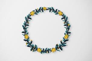 美しい花の円形のボタニカルフレームの写真素材 [FYI03826791]
