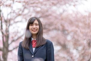 桜の前で微笑む女子学生の写真素材 [FYI03827494]