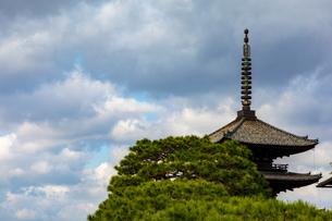 八坂の塔の写真素材 [FYI03827720]
