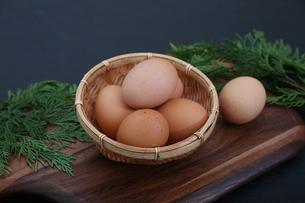 生卵の写真素材 [FYI03827903]