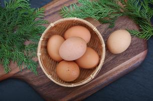 生卵の写真素材 [FYI03827904]