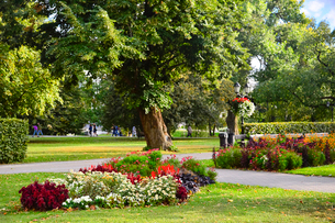 ラトビア・首都リガにあるエスプラナーデ公園の芝生に色々な花が咲いている光景の写真素材 [FYI03827976]