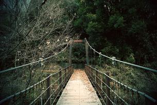 公園の中にある吊り橋の写真素材 [FYI03828261]