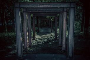 公園の中のゲートの写真素材 [FYI03828267]