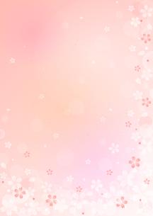 桜のイラストの背景イメージ(縦)のイラスト素材 [FYI03828270]
