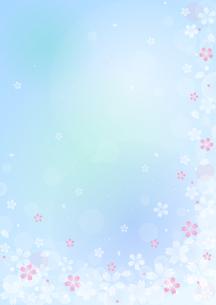 桜のイラストの背景イメージ(縦)のイラスト素材 [FYI03828272]