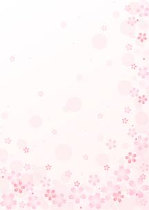 桜のイラストの背景イメージ(縦)のイラスト素材 [FYI03828273]