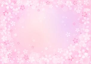 桜のイラストの背景イメージ(横:全体)のイラスト素材 [FYI03828275]