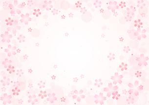 桜のイラストの背景イメージ(横:全体)のイラスト素材 [FYI03828277]