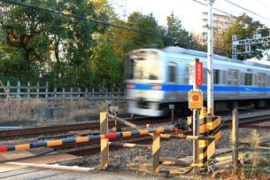 踏切を通過する電車の写真素材 [FYI03828635]