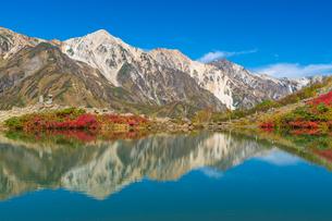 紅葉の八方池と白馬三山の写真素材 [FYI03829094]