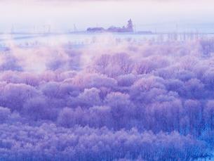 霧氷の写真素材 [FYI03829240]