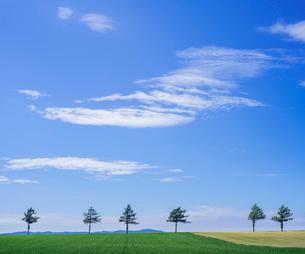 北海道 自然 風景 メルヘンの丘 青空と雲 の写真素材 [FYI03829423]