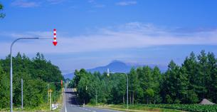 北海道 自然 風景 パノラマ 一本道と青空の写真素材 [FYI03829428]