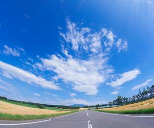 北海道 自然 風景 田園風景を走る一本道と青空 の写真素材 [FYI03829443]